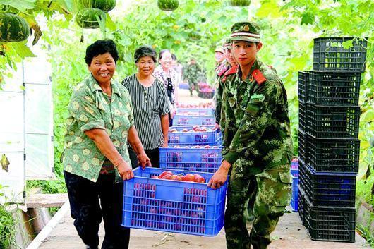 鄂州武警官兵幫村民搶收番茄