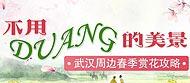不用Duang的美(mei)景 武(wu)漢周邊春季賞花攻略