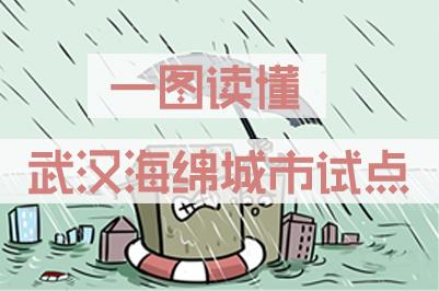 图解武汉海绵城市试点