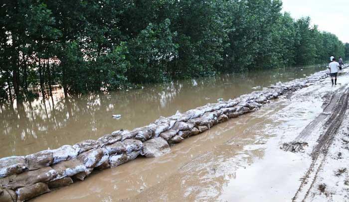 新華網航拍:湖北天門漢北河水位再創歷史新高