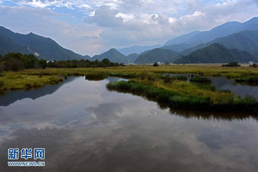 神農架大九湖開始進入最美季節