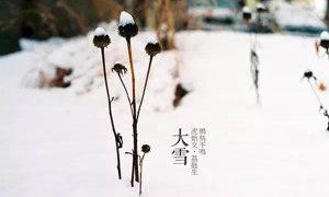 二十四節氣之大雪