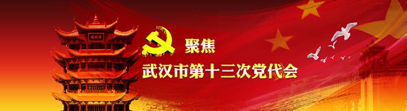 聚焦武漢市第十三次黨代會