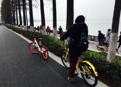 共享單車:發展共享經濟 推動綠色出行