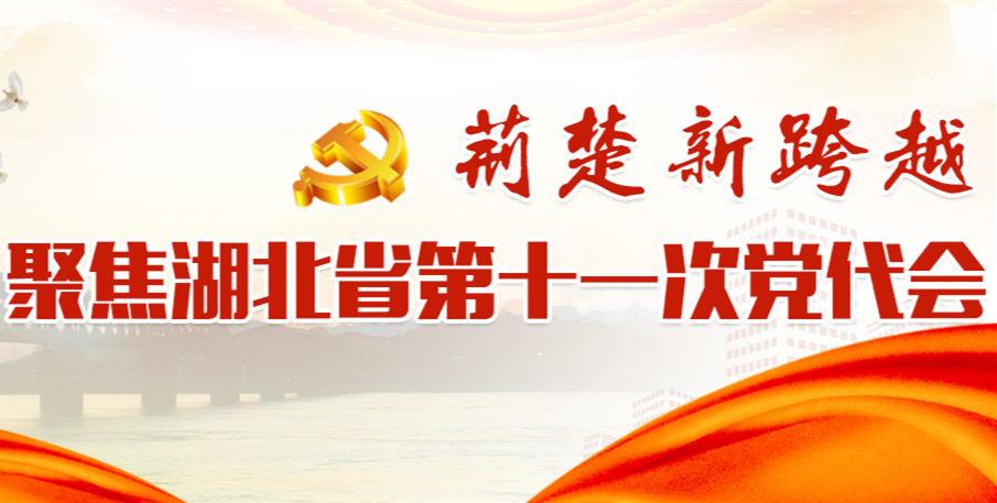 聚焦湖北省第十一次黨代會