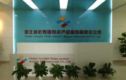 湖北省宏泰國資集團在光谷打造金融總部