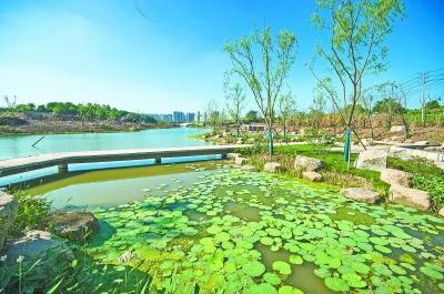 東湖港生態建設雛形顯現 將成沿線居民休閒新去處