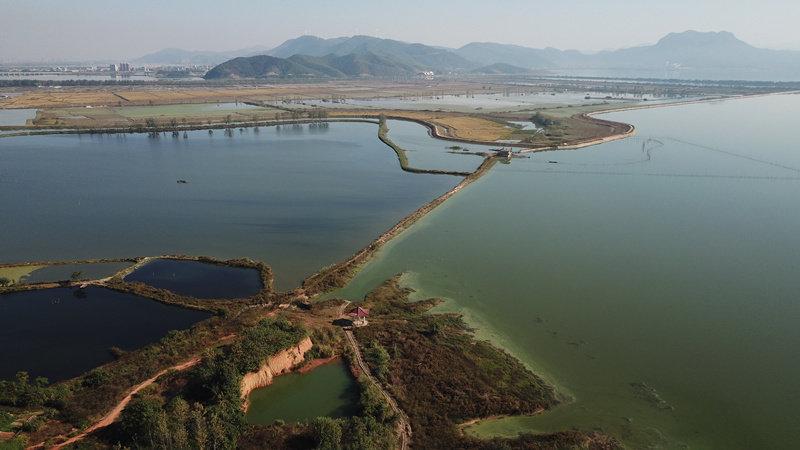 視頻丨航拍黃石網湖終止承包經營 投肥養殖將全面禁止