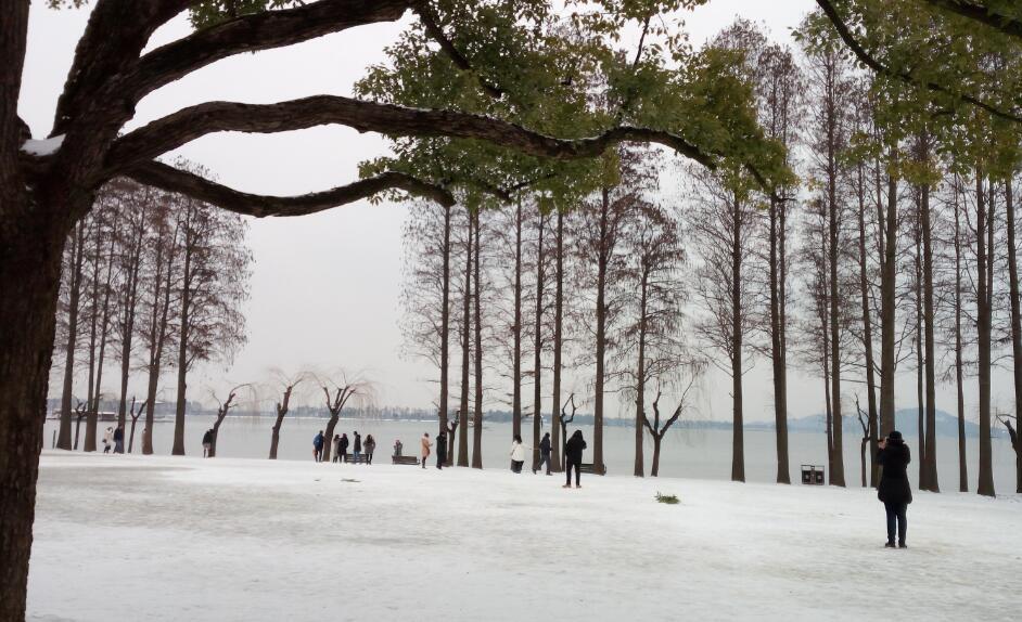 VR丨武漢遇持續降雪 東湖風景區宛如童話世界