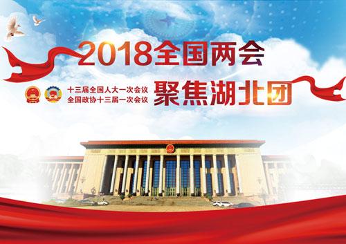 2018全國兩會聚焦湖北團