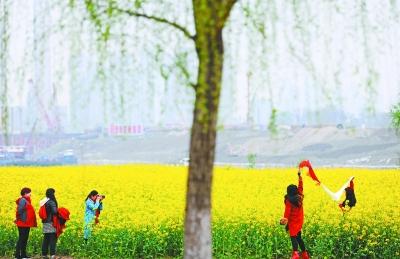 今天春分陽光回歸 武漢後天最高氣溫或達23℃