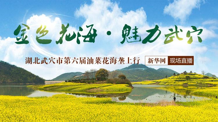 新华网直播:春来武穴看花海