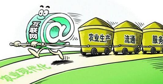 """湖北力促農村電商發展 去年""""荊楚味""""賣了435億元"""