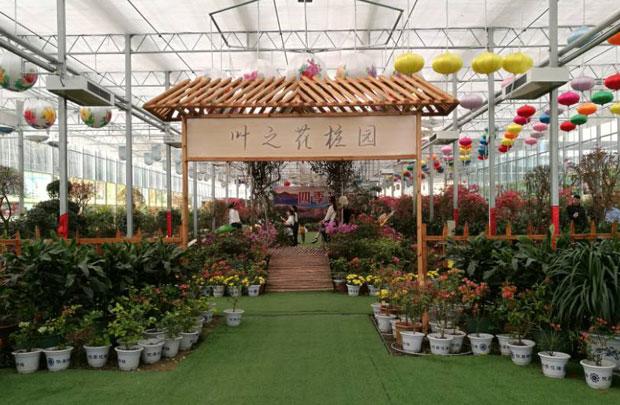 新華VR帶您體驗英山四季花海蝶戀花展覽館