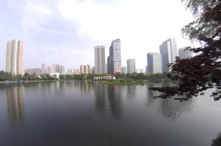 VR視角丨武漢四美塘公園展生態畫卷
