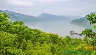 湖北力争三年绿化长江两岸
