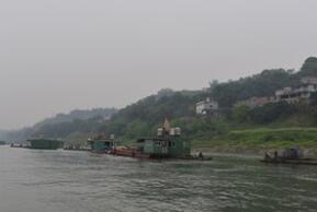 三峡水库今年两次生态调度 四大家鱼产卵1亿粒