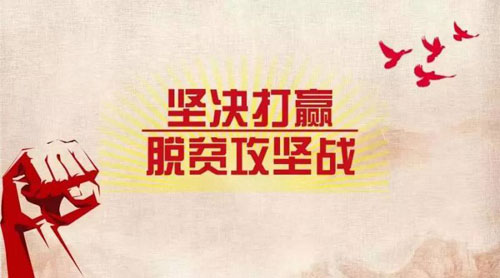 湖北省扎實推進打贏脫貧攻堅戰三年行動