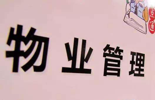 武漢新物業管理條例明年起執行 攜犬只出戶要挂犬牌