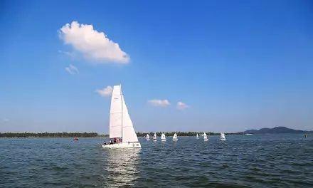 武漢東湖水質創40多年來最好水平