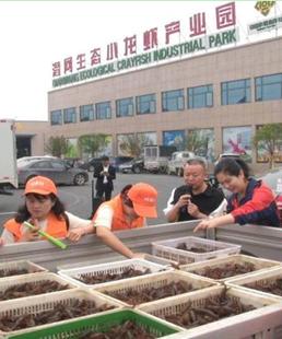 潛江發布小龍蝦主題旅遊線路