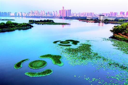 武漢開發區三角湖水環境治理初見成效