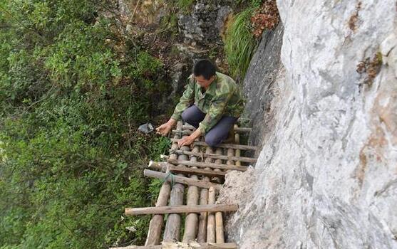 湖北巴東:絕壁修路人