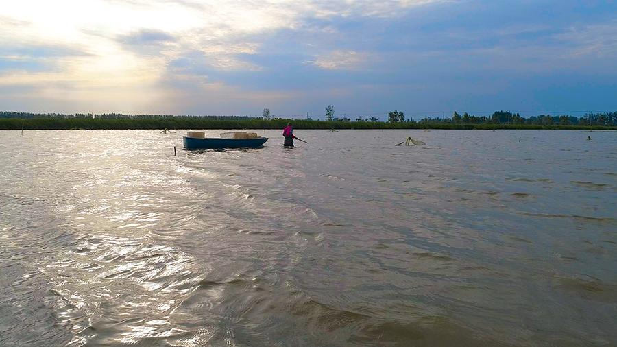 六月潛江 半城龍蝦