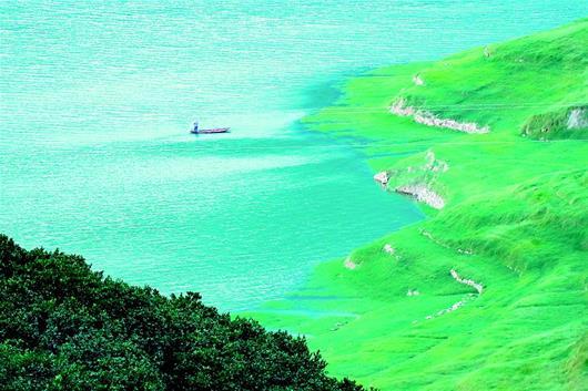 三峽水庫消落帶現生態美景