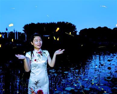 """江城""""漢江螢河""""給市民帶來夏夜浪漫體驗"""