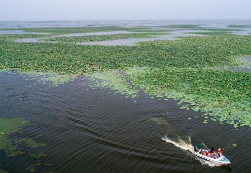 """從""""靠湖吃湖""""到""""上岸就業""""——洪湖漁民的生態轉型"""
