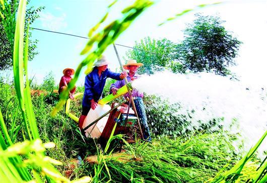 抽水抗旱保豐收
