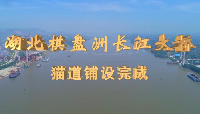 湖北棋盤洲長江大橋貓道鋪設完成