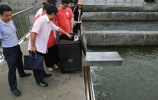 """用手機養魚 湖北襄陽大學生研發出魚塘養殖""""好幫手"""""""