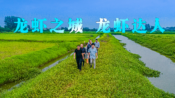 微視中國丨龍蝦之城 龍蝦達人