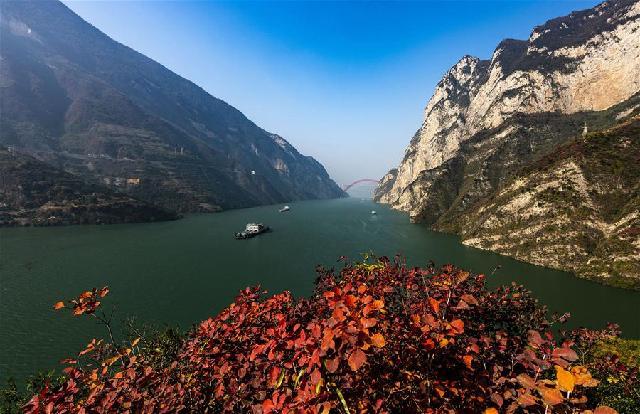 三峽紅葉似彩霞