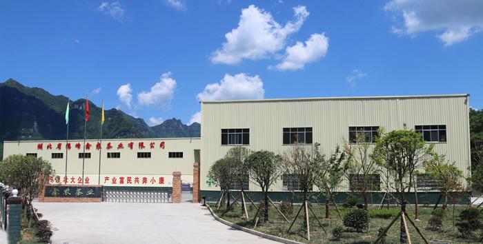 市場和龍頭企業帶動鶴峰茶高質量發展
