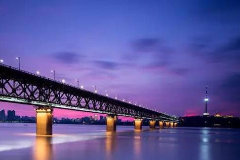 世界衛生組織專家組赴武漢市考察