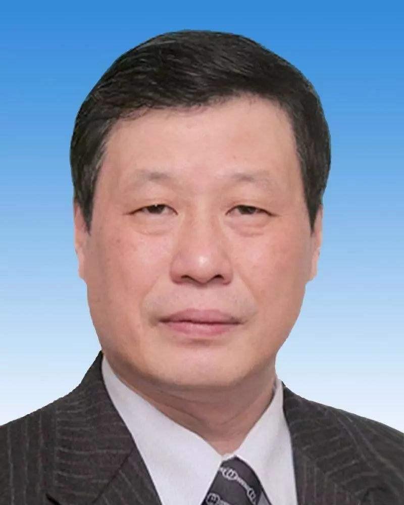 應勇任湖北省委書記