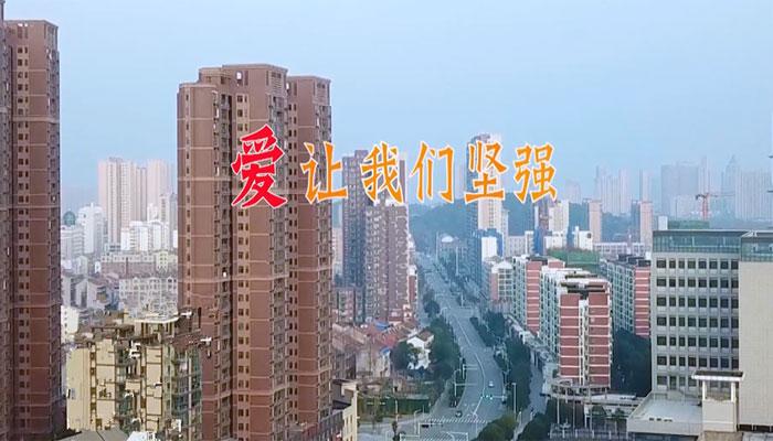 蔡(cai)甸區抗(kang)疫MV《愛讓我們堅(jian)強》為武漢加油