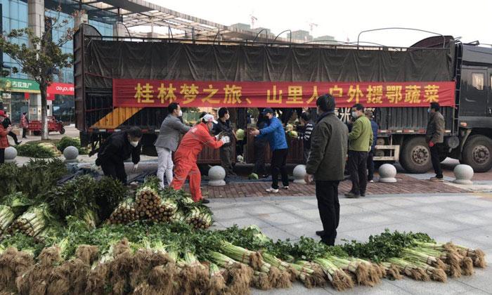 桂林3萬斤新鮮蔬菜馳援武漢東西湖區