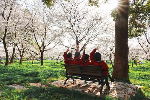 這個春天,花兒為(wei)你(ni)盡情綻放(fang)