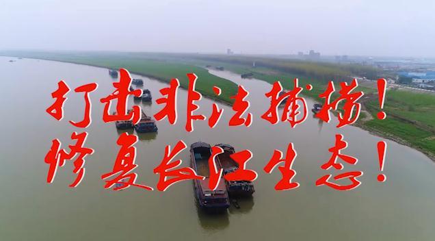 禁漁期豈容非法捕撈
