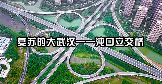復蘇的大武漢——沌口立交橋