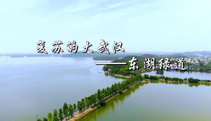 復蘇的大武漢——東湖綠道