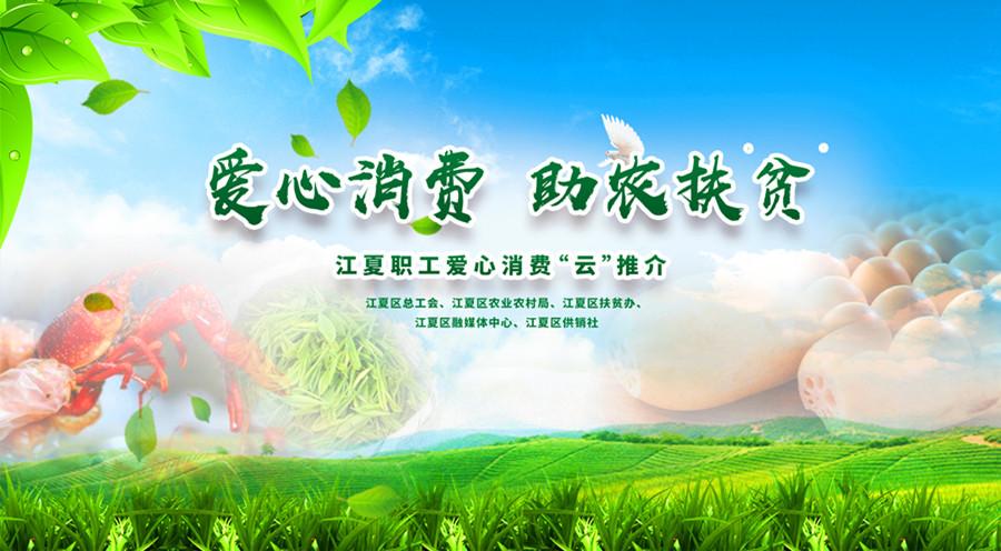 新華網直播:武漢江夏職工愛心消費活動啟動儀式