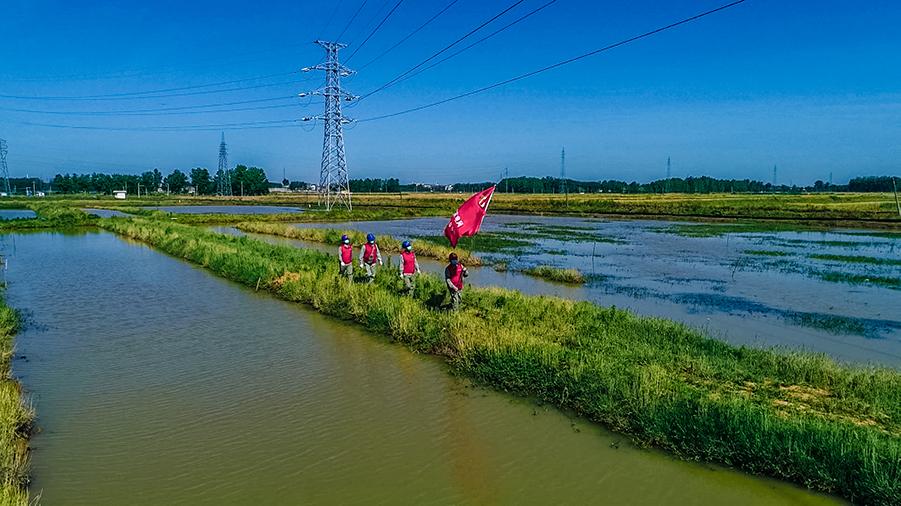 湖北老河口:電力係統黨建活動融入基層服務一線