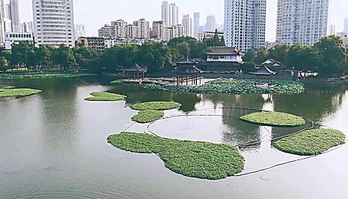 """【""""飛閱""""中國】航拍蓮花湖公園 古樸雅韻荷香幽幽"""