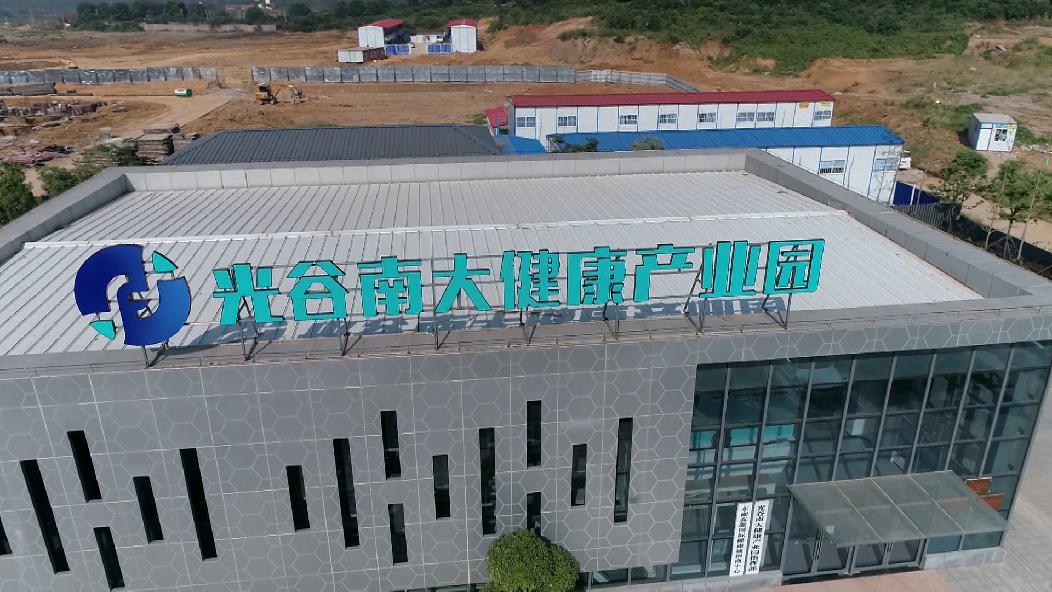 光谷南大健康産業園抓緊施工 招商引資同步進行