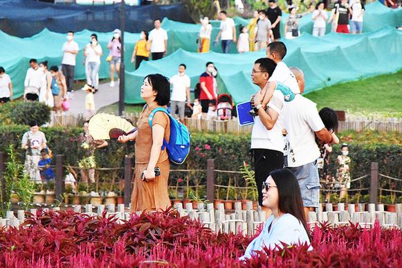 蔡甸花博匯迎來省內外多個旅行團 遊客近2000人